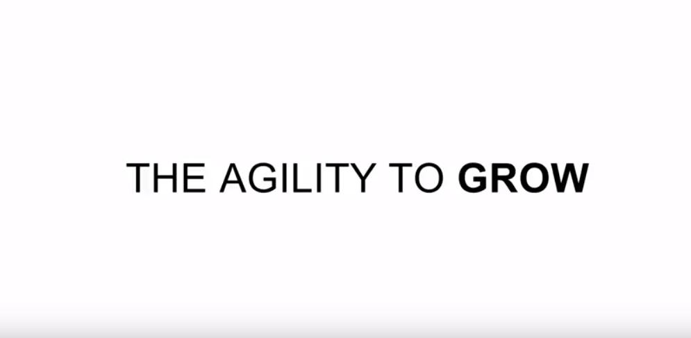 netsuite-agility-to-grow