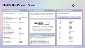 netsuite cheat sheet