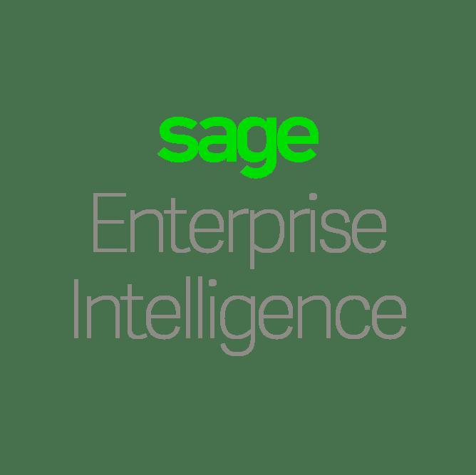 EnterpriseIntelligence_ISVlogo_transparent.png