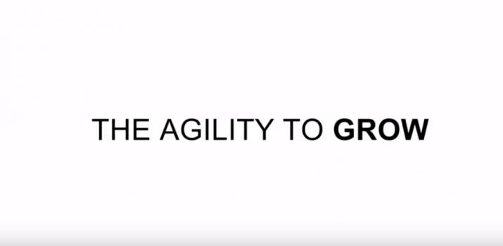 netsuite-agility-to-grow